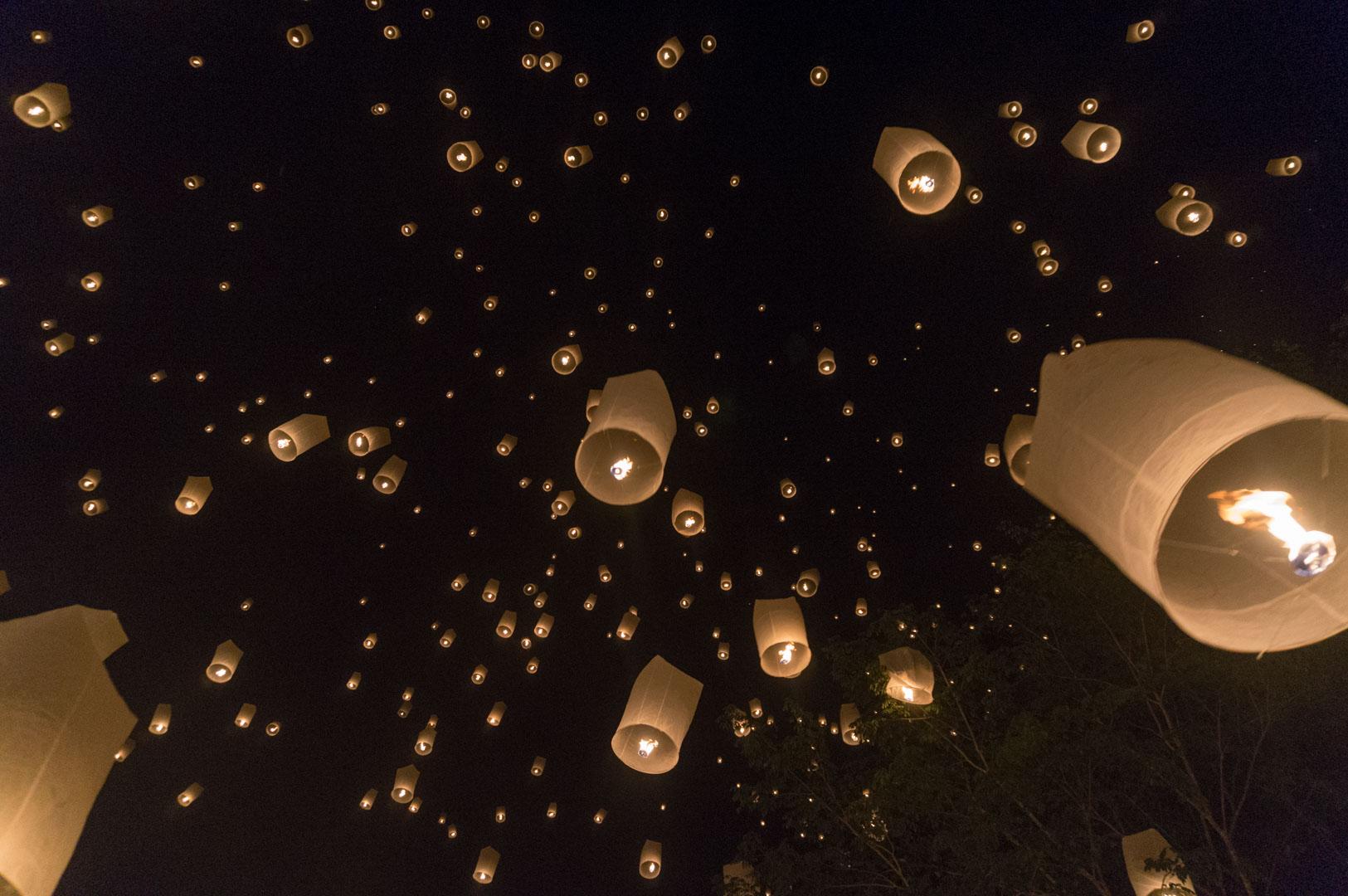 Der Himmel voller Lampignons