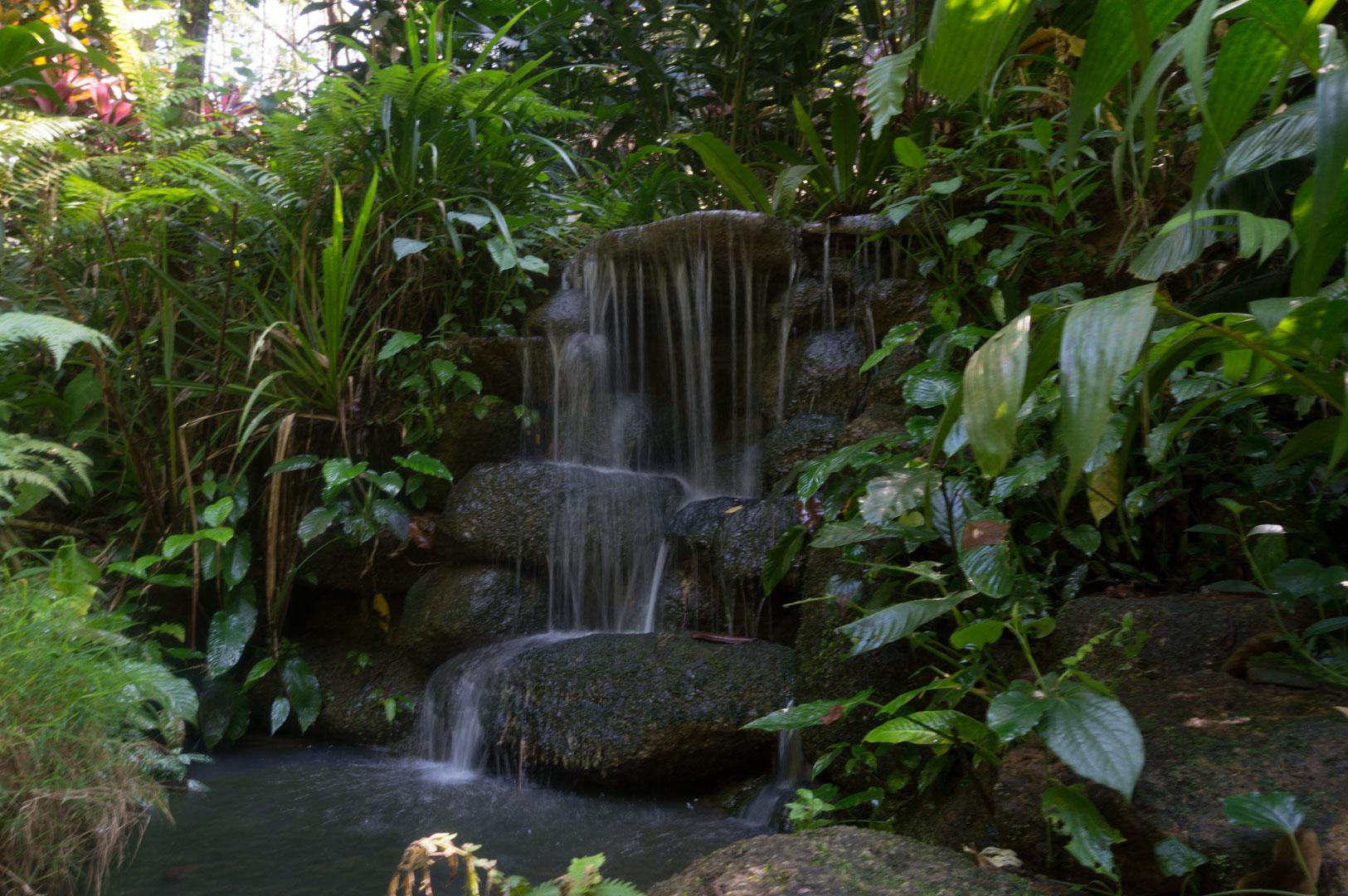 Tropical Sipce Garden Penang