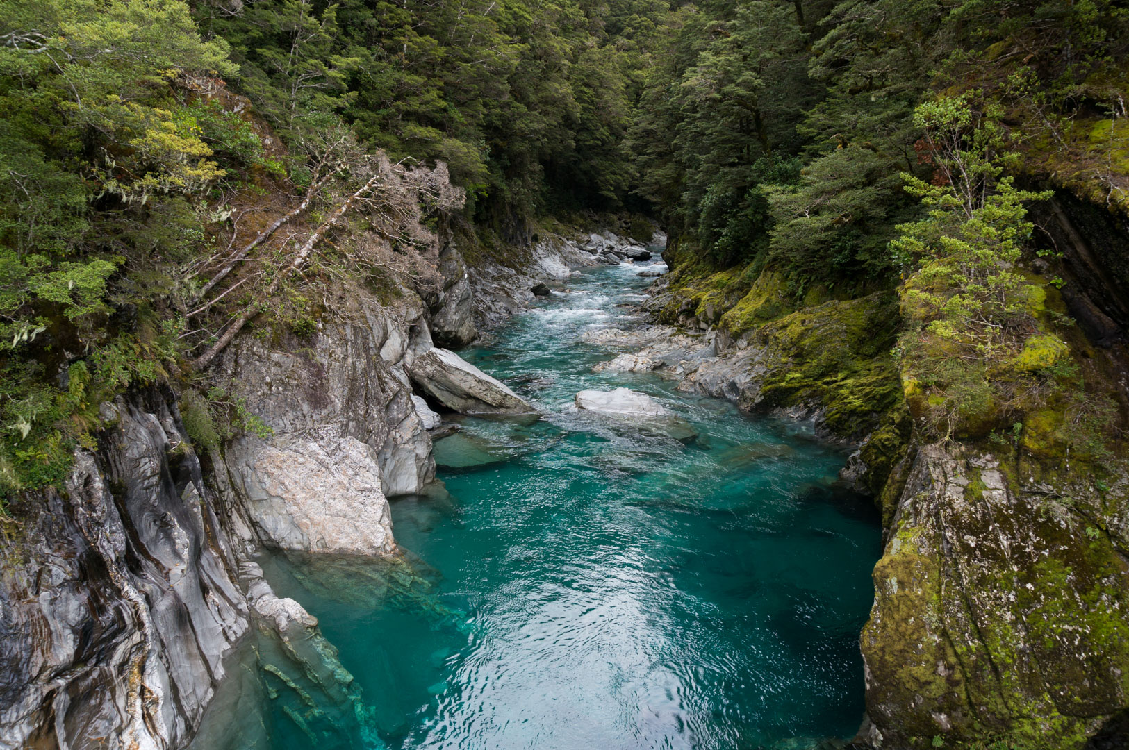 Blue Pools New Zealand